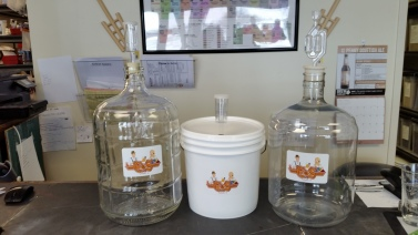 3 gallon glass and PET Carboys, 2 gallon plastic fermenting bucket